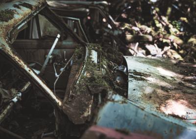 Photographie urbex d'un capot d'une vieille voiture envahie par la mousse et la végétation.