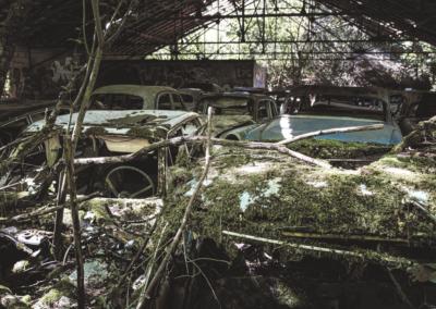 Photographie urbex de plusieurs vieilles voitures abandonnées sous un hangar dans une forêt par le rat graphiste.