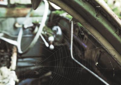 Photographie d'un volant d'une vieille voiture avec une toile d'araignée en premier plan sous un hangar dans une forêt par le rat graphiste.